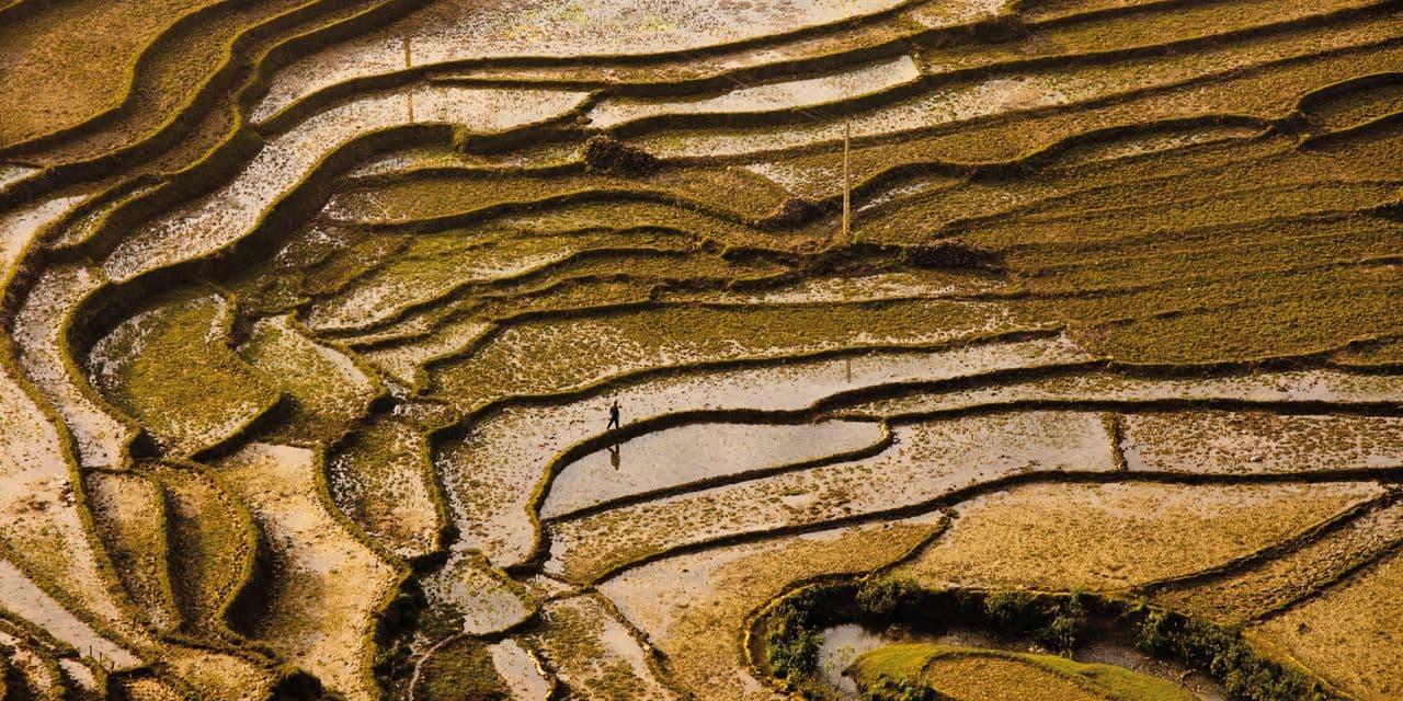Vietnam : à la recherche du temps perdu