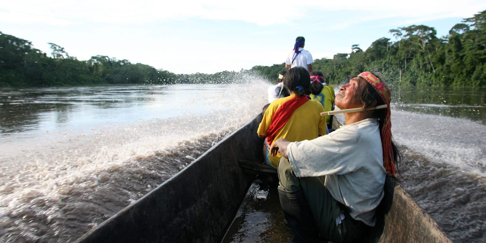 Le cœur de l'Amazonie aussi est menacé