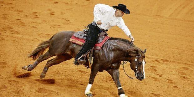 Le cavalier belge Bernard Fonck sur le toit du monde - La Libre