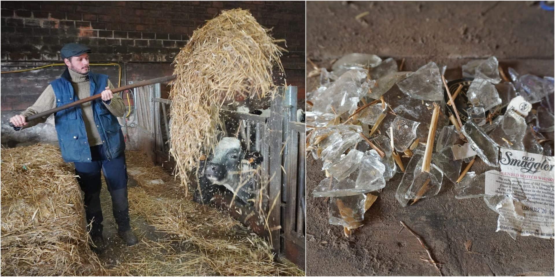 """Julien, agriculteur de Lasne, retrouve des bris de verre dans un ballot de paille: """"Ça peut entraîner des catastrophes"""""""