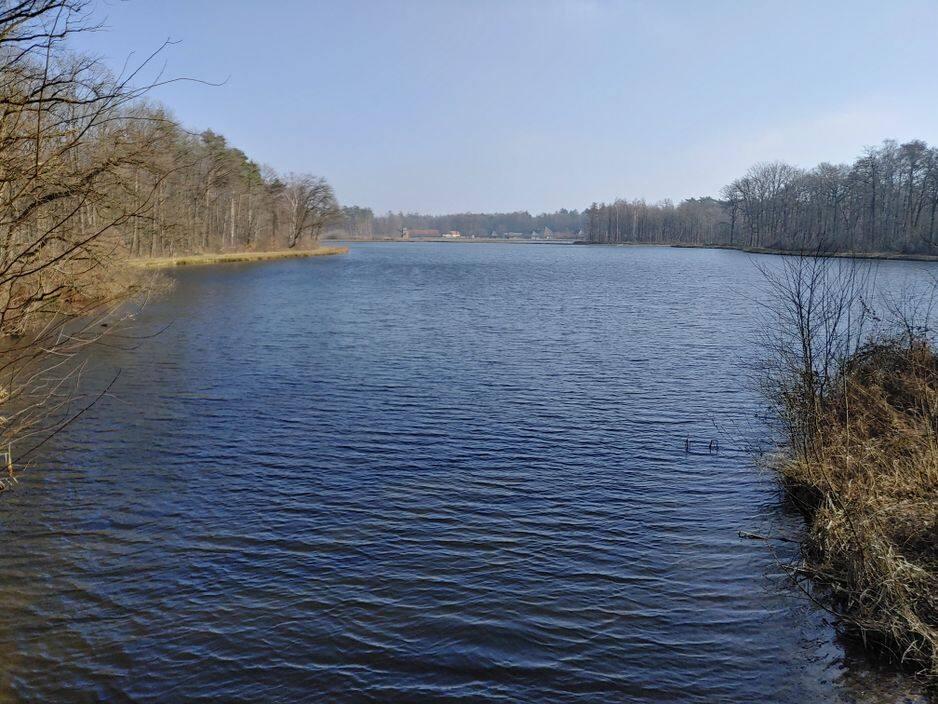 Les étangs de la réserve de Wijers à Bokrjik