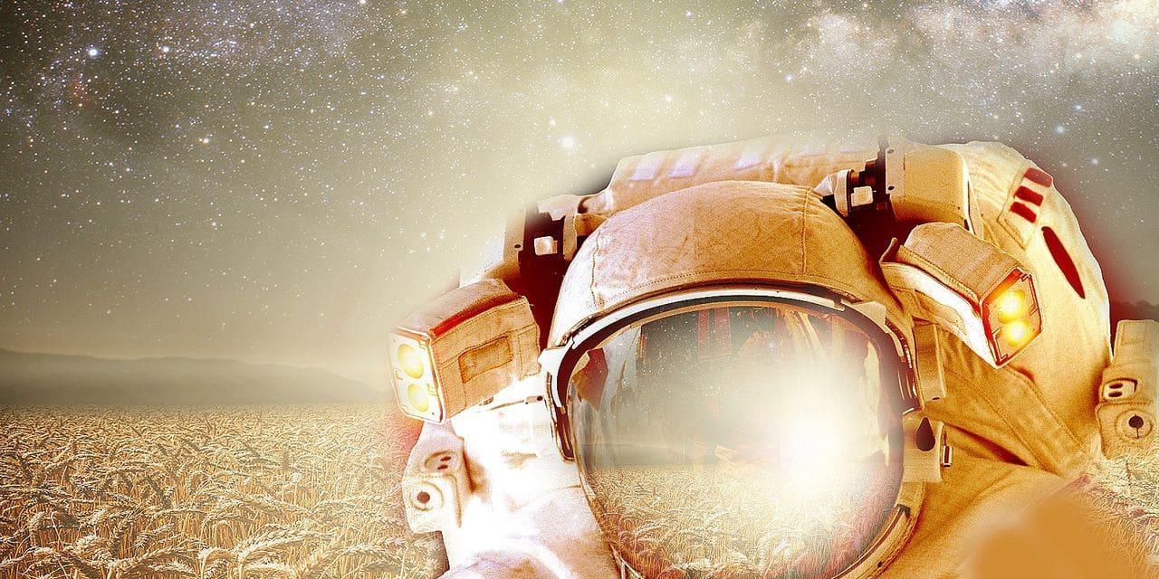 SpaceBakery, le projet belge qui vise à faire du pain sur Mars