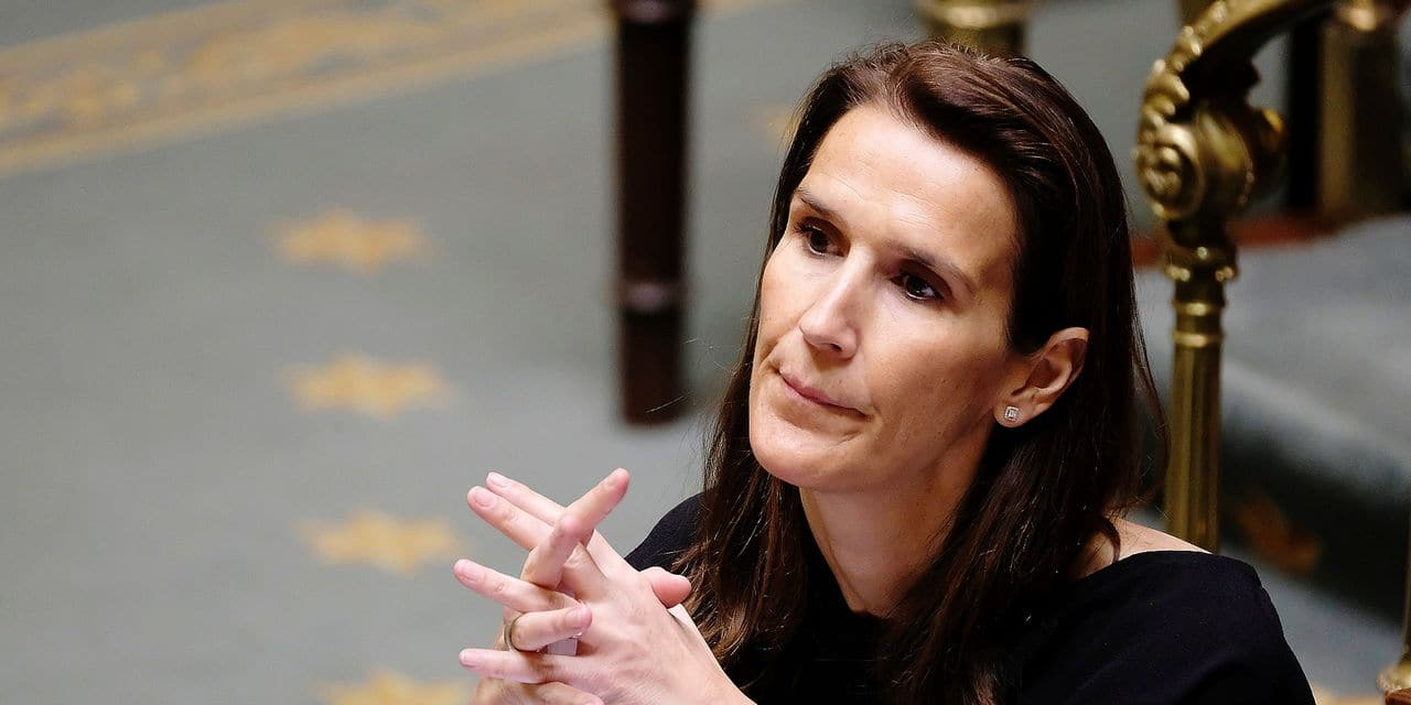 Minister of Budget Sophie Wilmes pictured during a plenary session of the Chamber at the federal parliament, in Brussels, Thursday 24 January 2019. BELGA PHOTO NICOLAS MAETERLINCK