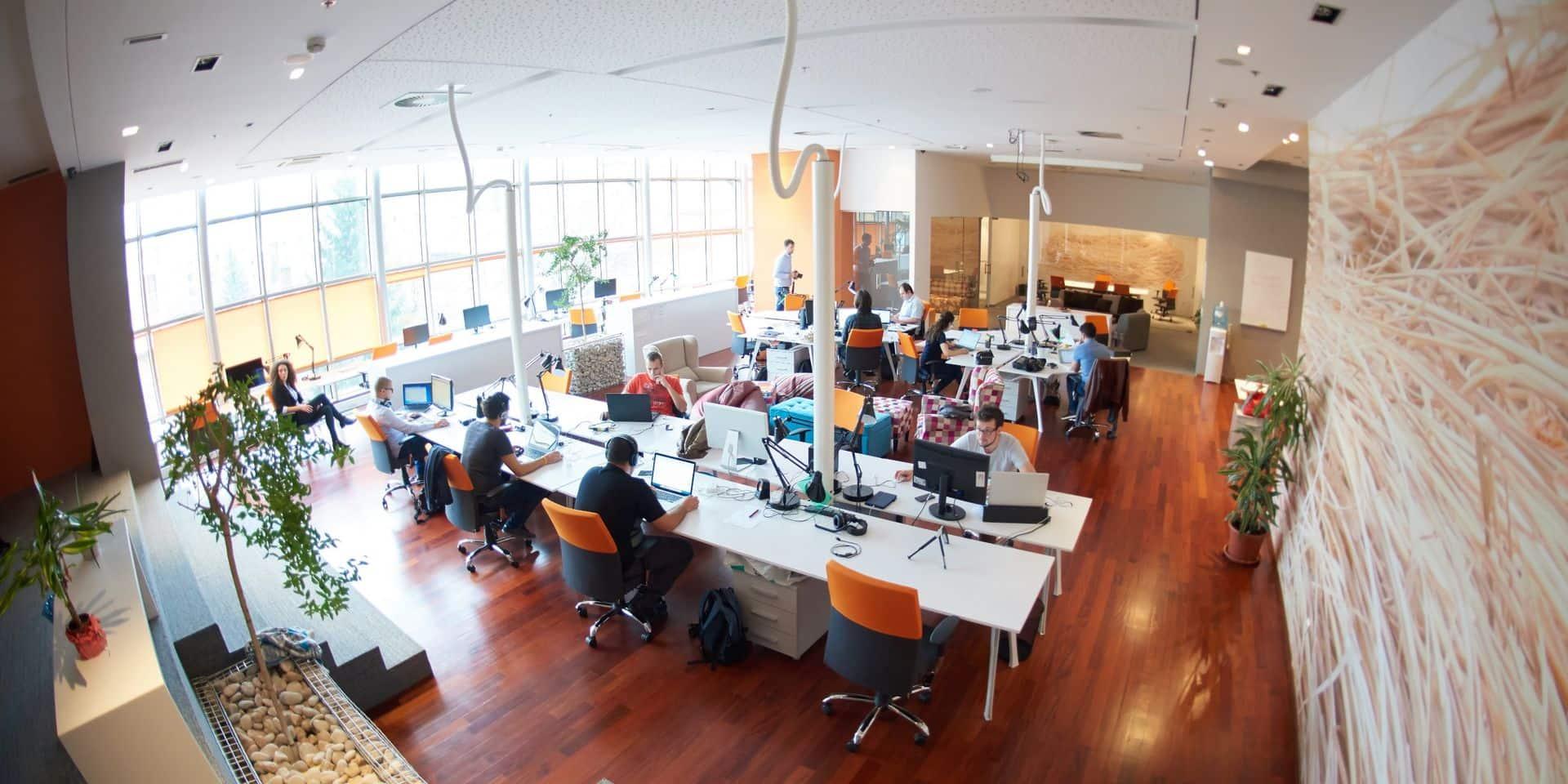 Sans aide publique, une start-up belge sur deux sera à sec en septembre