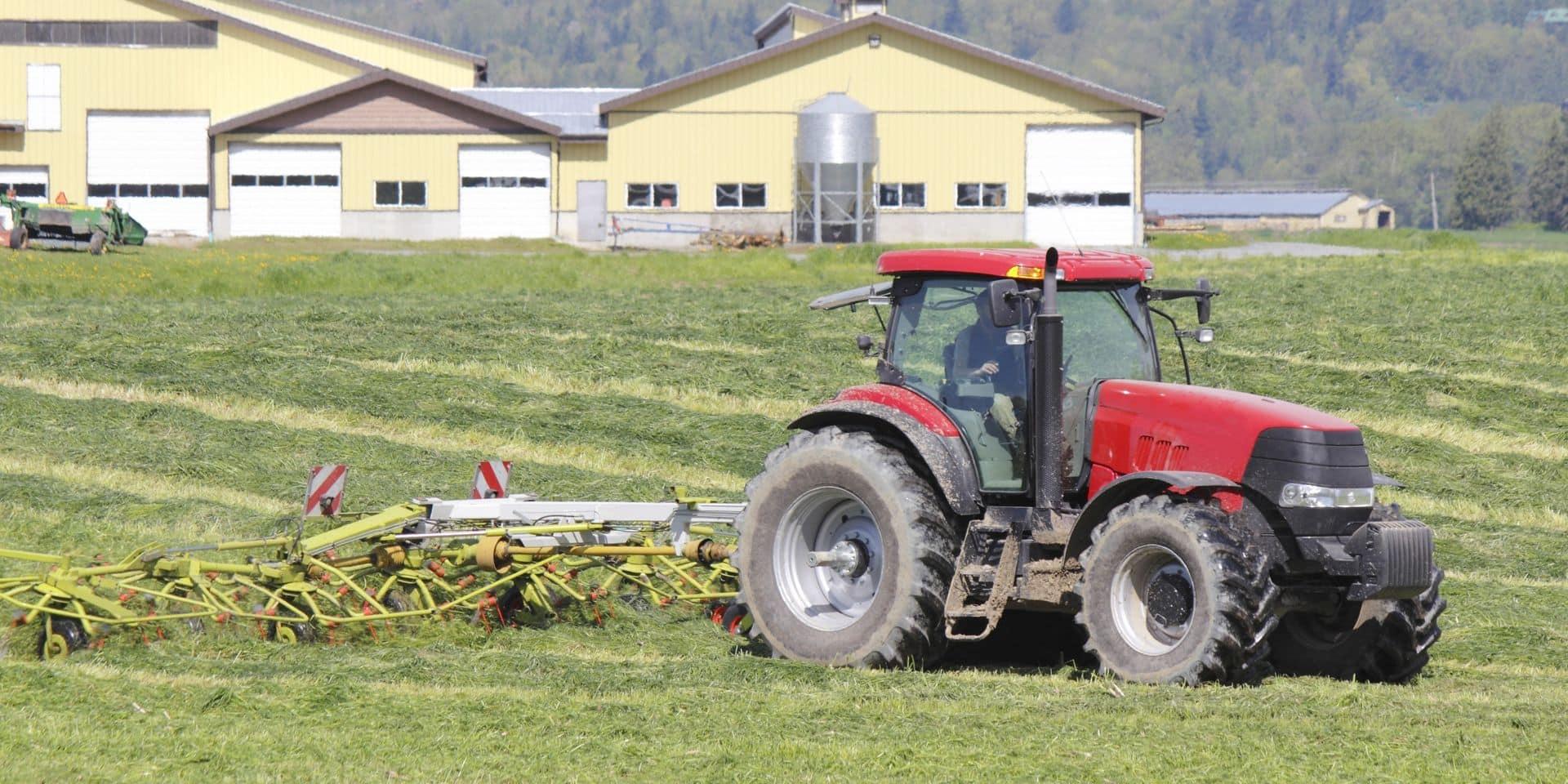Coronavirus : une exploitation agricole allemande confinée après 174 cas positifs au coronavirus