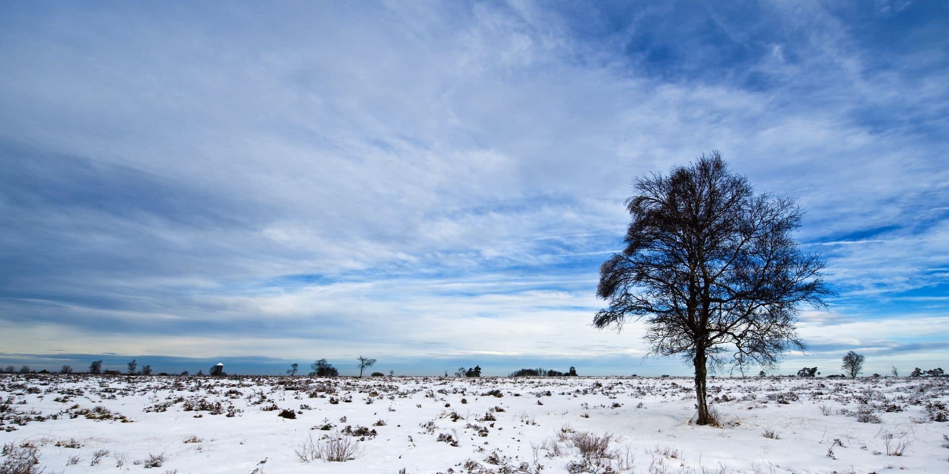 Météo: les premières neiges attendues cette nuit en Belgique