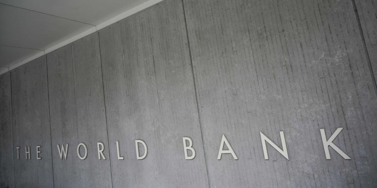 La Banque mondiale a une nouvelle économiste en chef: Carmen Reinhart
