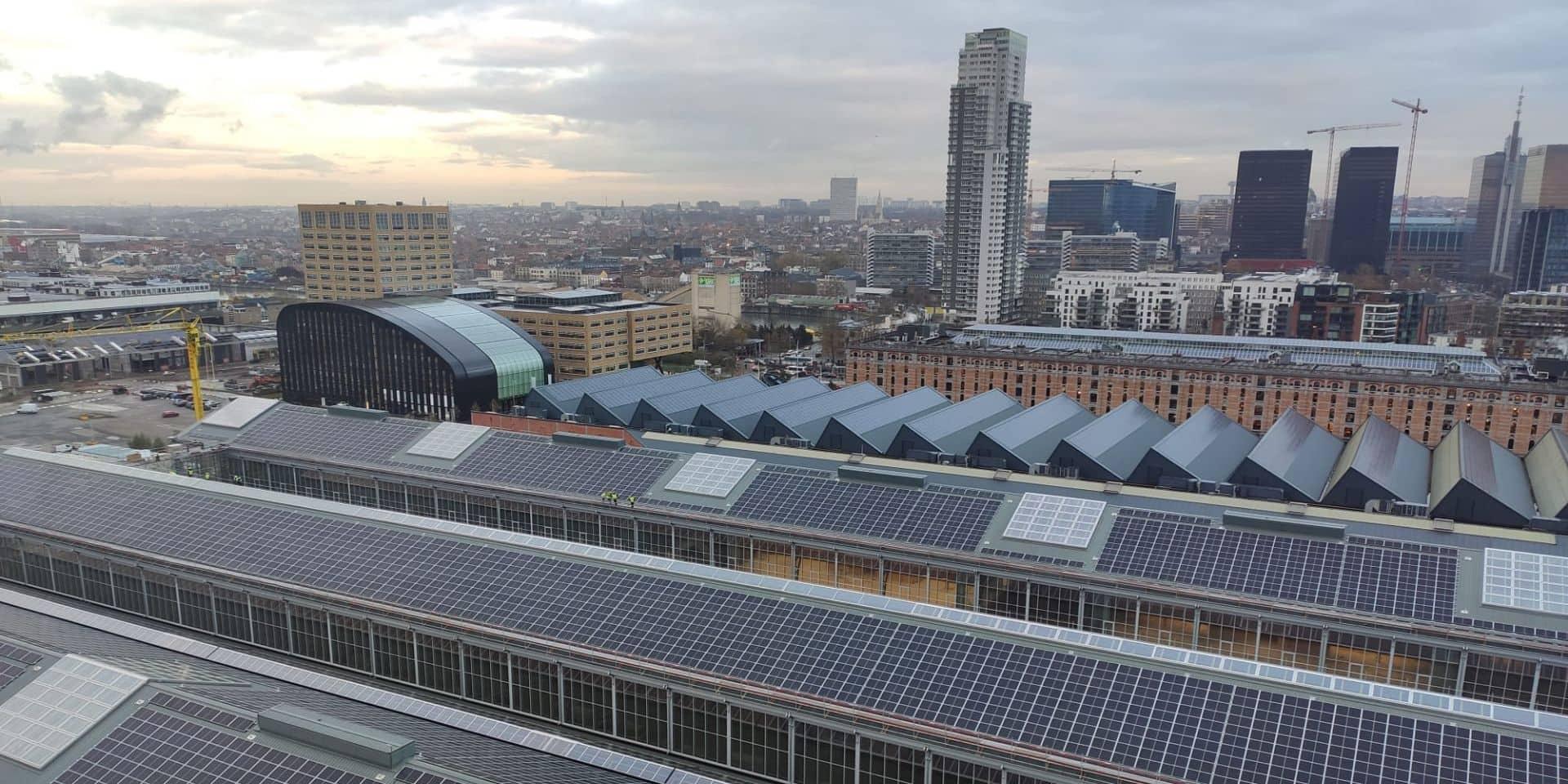 Sur les toits de la Gare maritime, la production d'électricité atteint le million de kWh