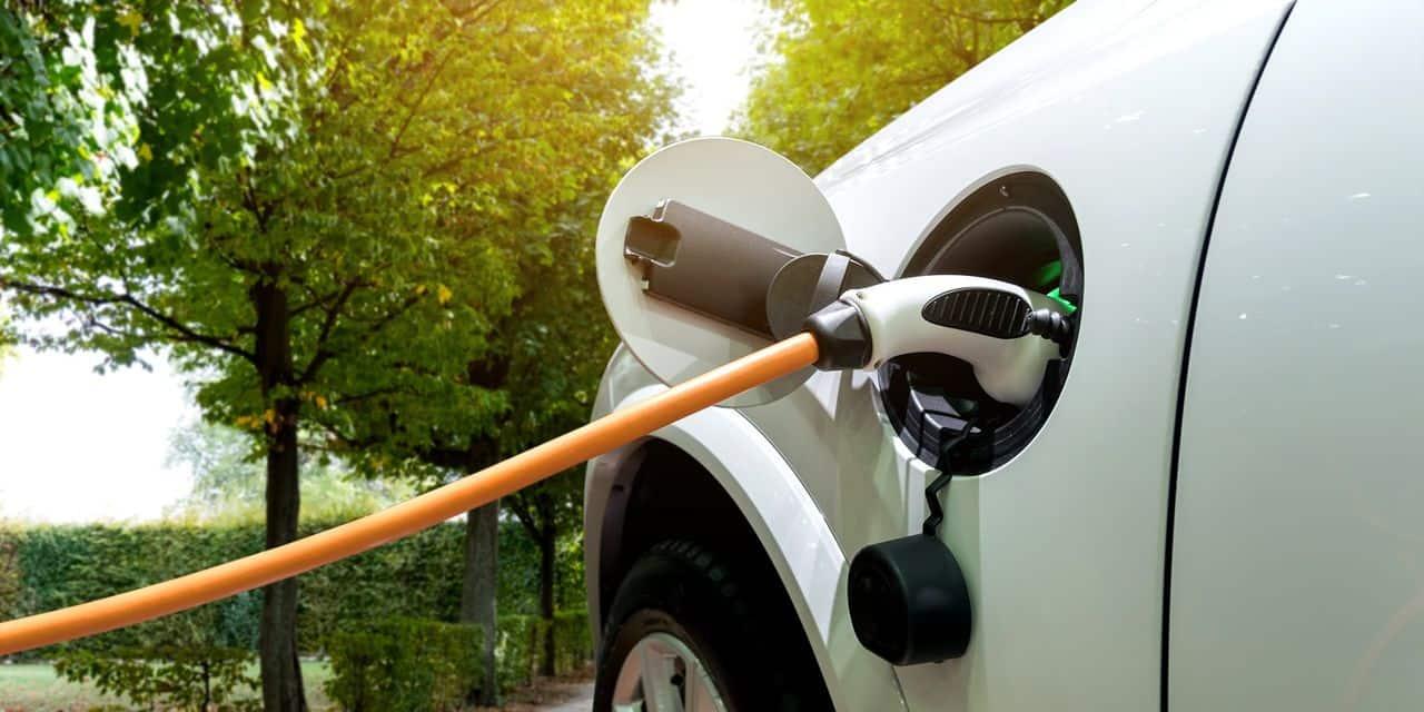La proportion des voitures électriques a triplé cette année