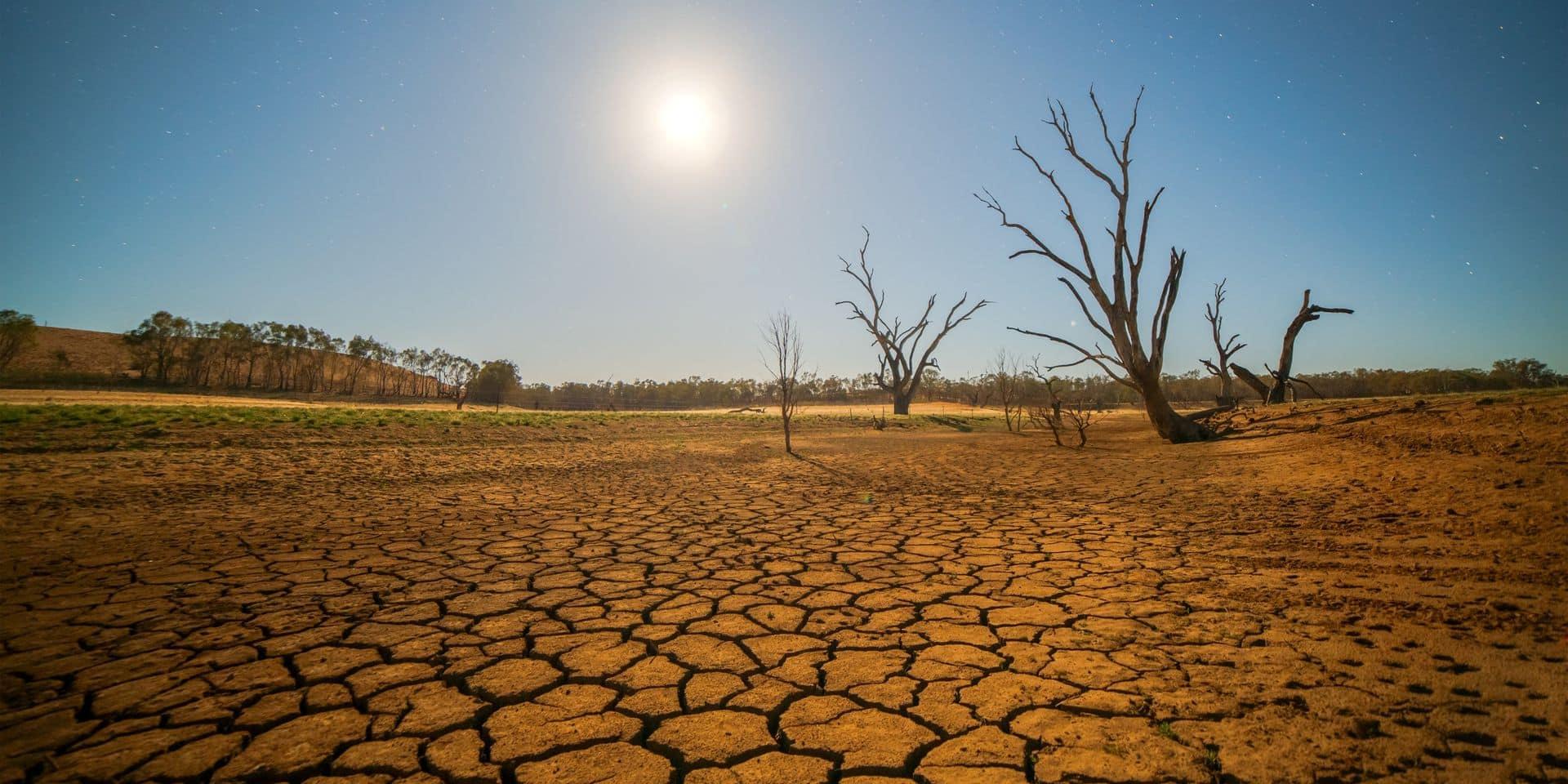 Climat: la sécheresse extrême de 2018-2019 en Europe appelée à se répéter