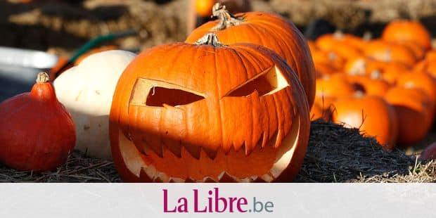 Un petit garçon drogué avec un bonbon récolté pour Halloween — États-Unis
