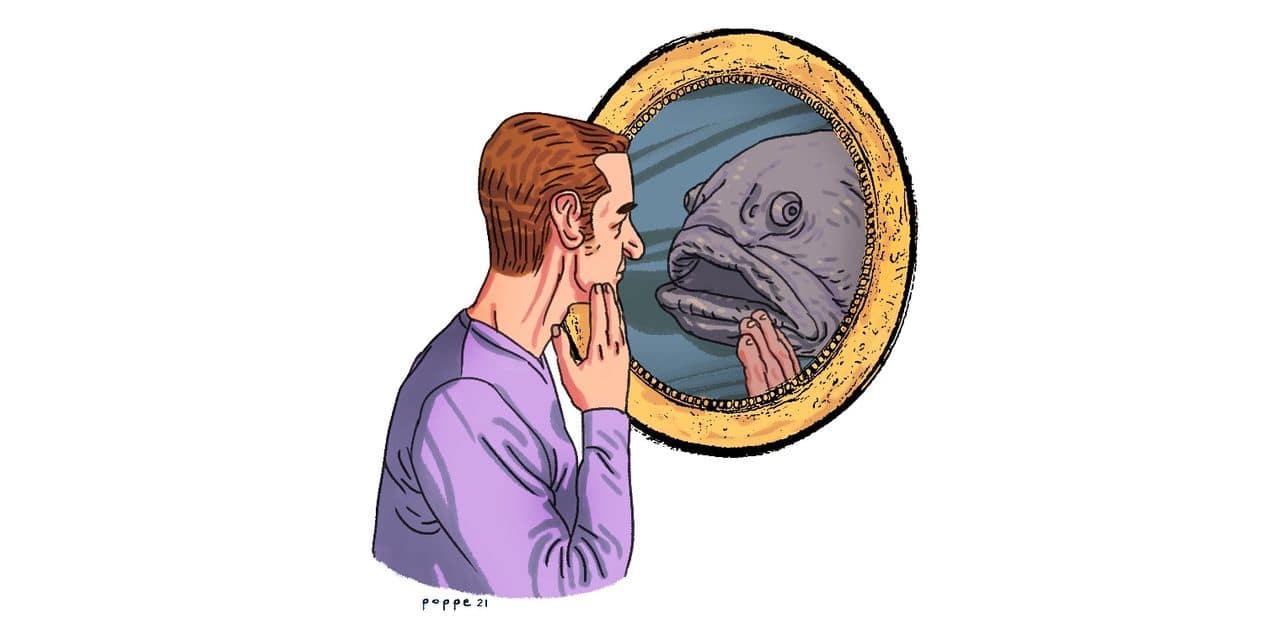 """Seaspiracy"" ou pourquoi je ne mange plus de poisson"