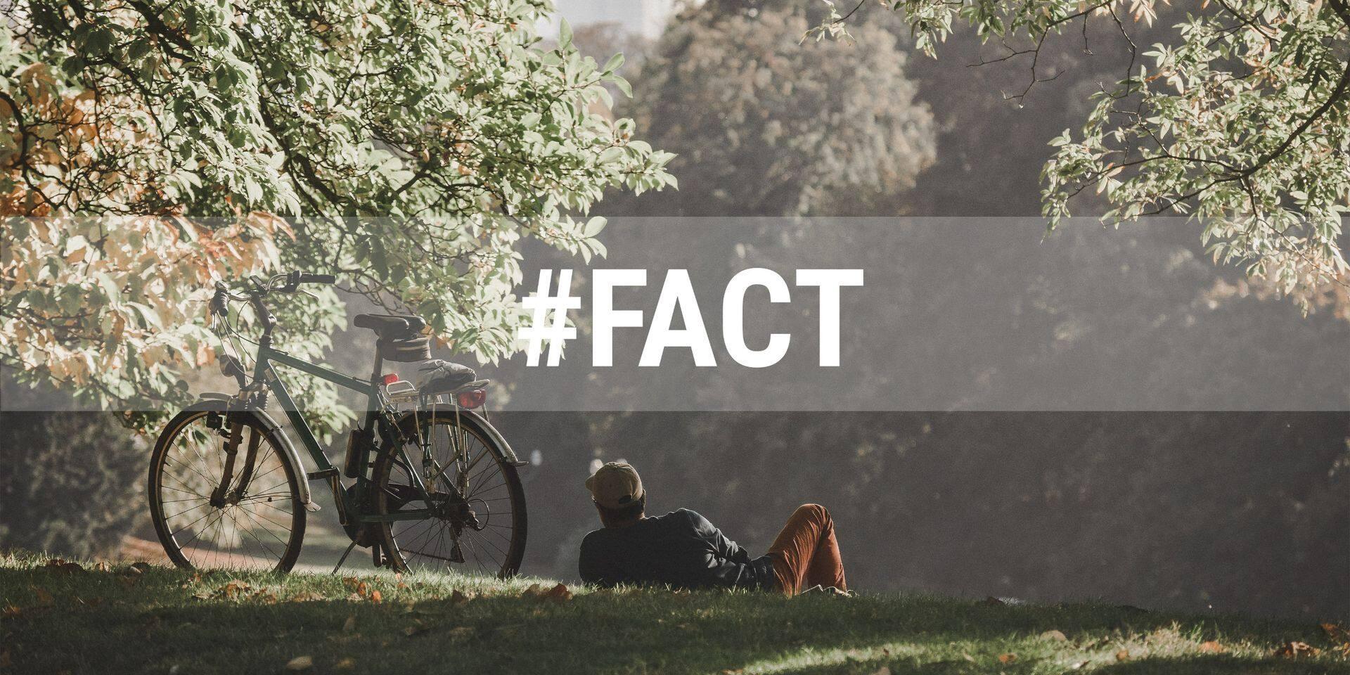 Un Bruxellois sur cinq n'a pas accès à un espace vert près de chez lui