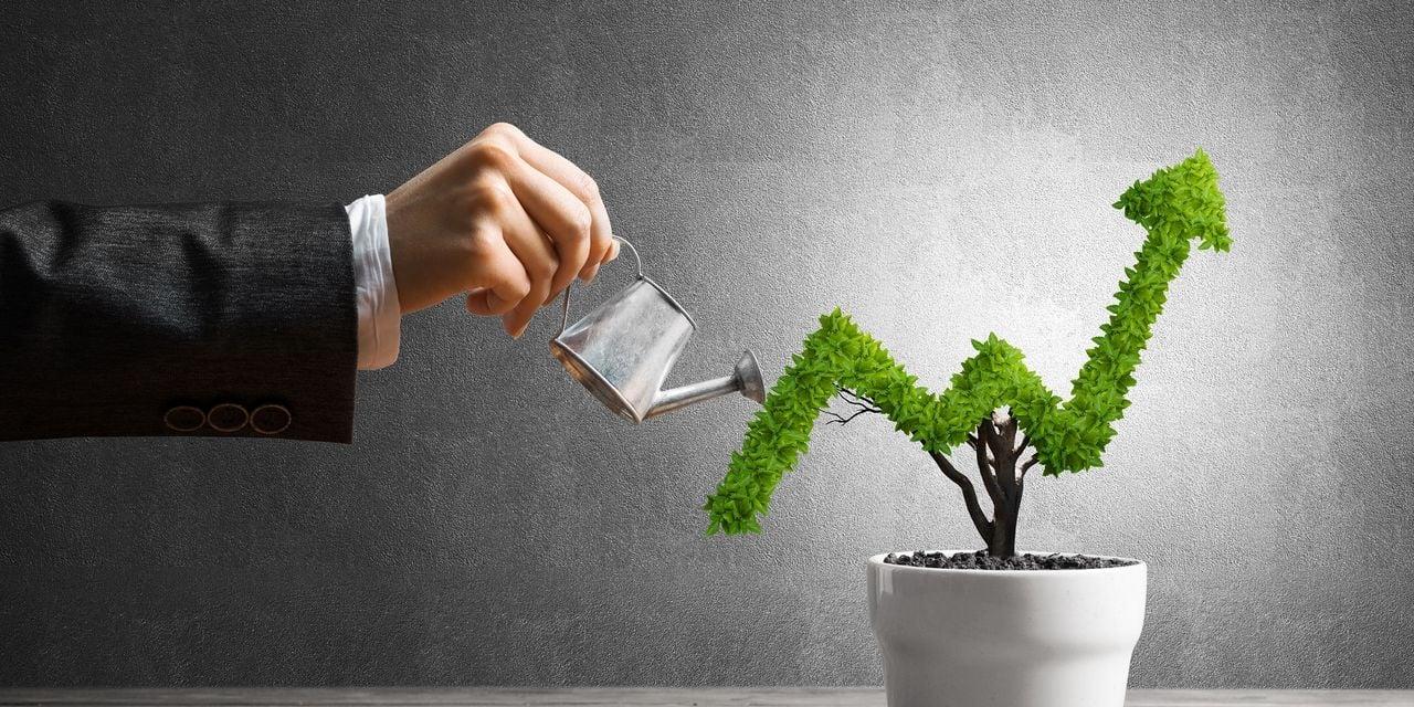 Sicav de Cristal du meilleur fonds patrimonial dynamique: TreeTop Asset Management récompensé
