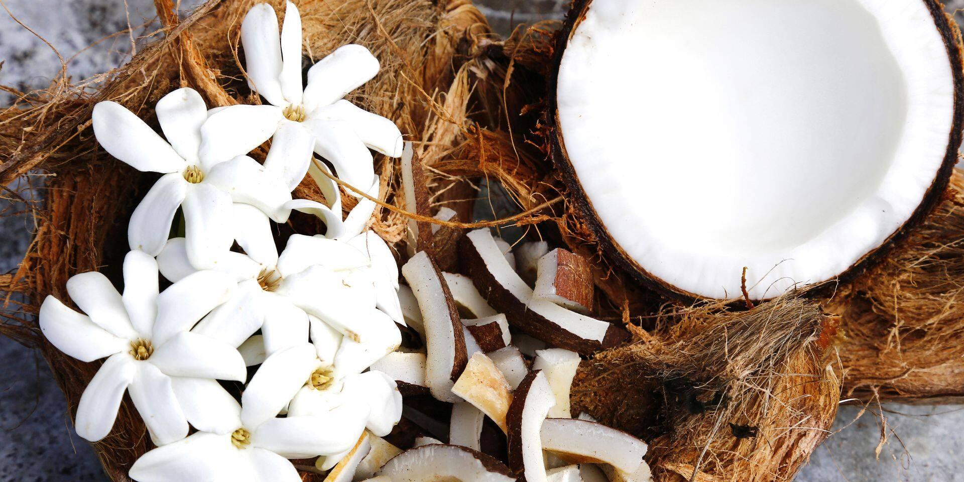 """L'huile de coco est un """"pur poison"""" selon un professeur de l'université Harvard"""