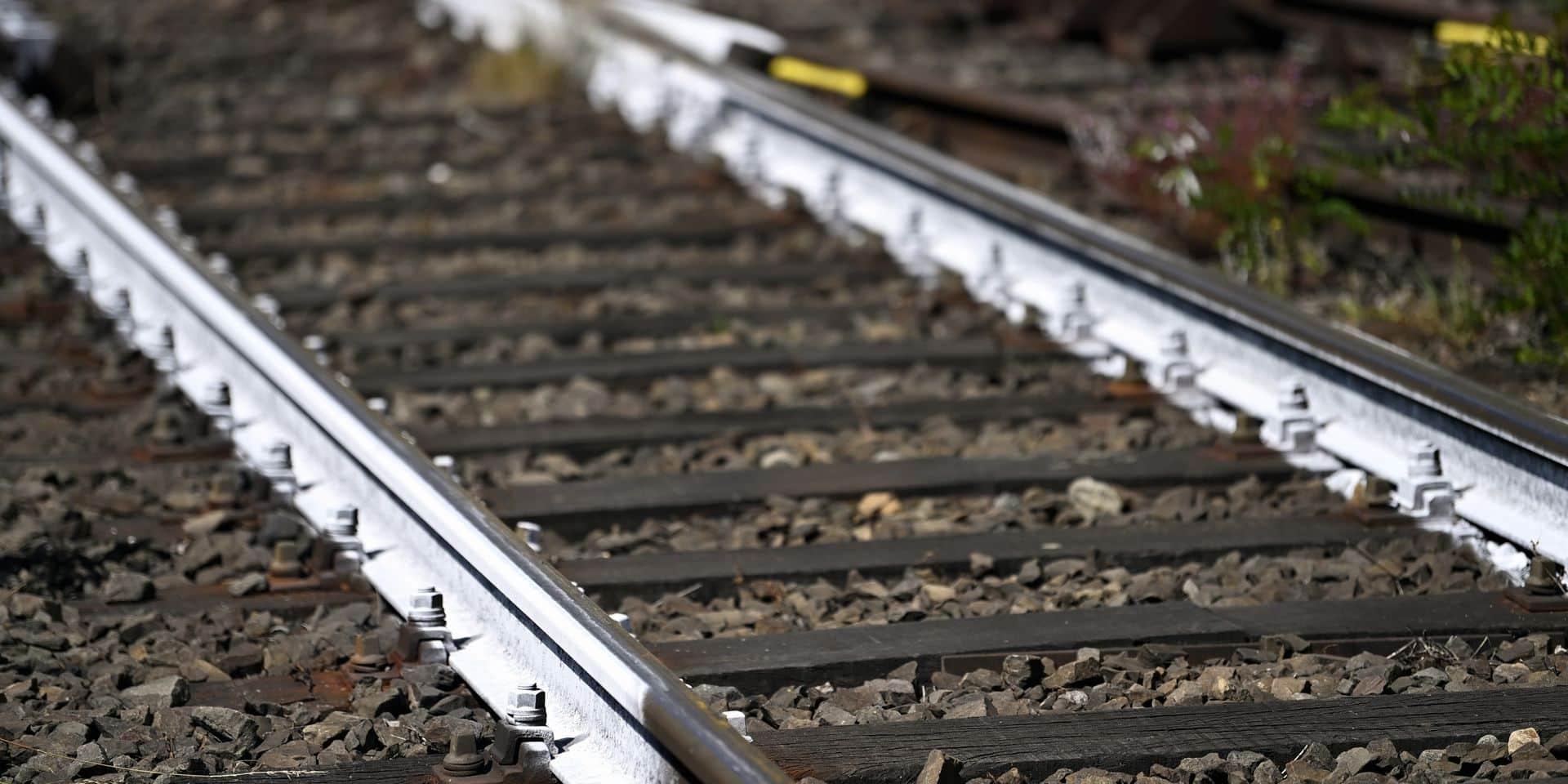 Les coûts relatifs aux sillons sont les coûts payés au gestionnaire de l'infrastructure national pour l'utilisation de la voie.
