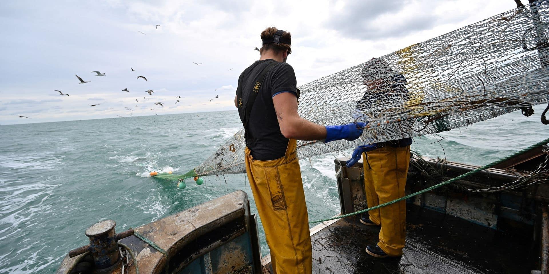 Brexit : Autorisations prolongées pour les pêcheurs français d'accéder à Jersey et Guernesey