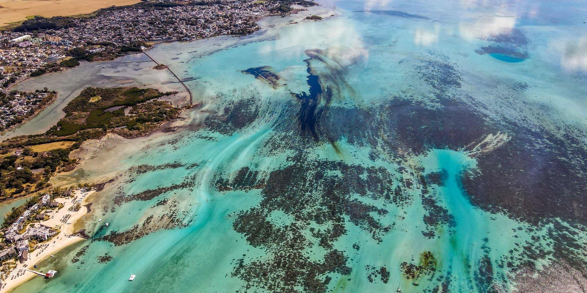 Une marée humaine face à la pire catastrophe écologique de l'histoire de l'île Maurice