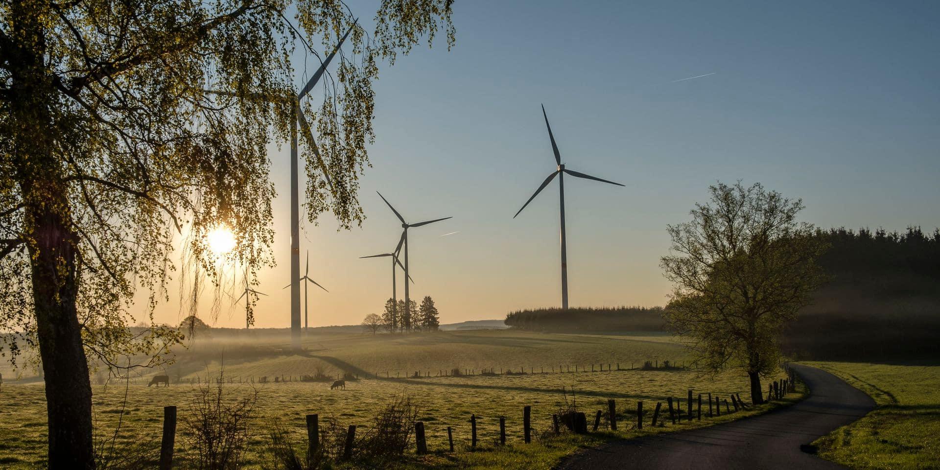 Appel à témoignages : la Wallonie doit-elle arrêter de soutenir l'installation d'éoliennes ?