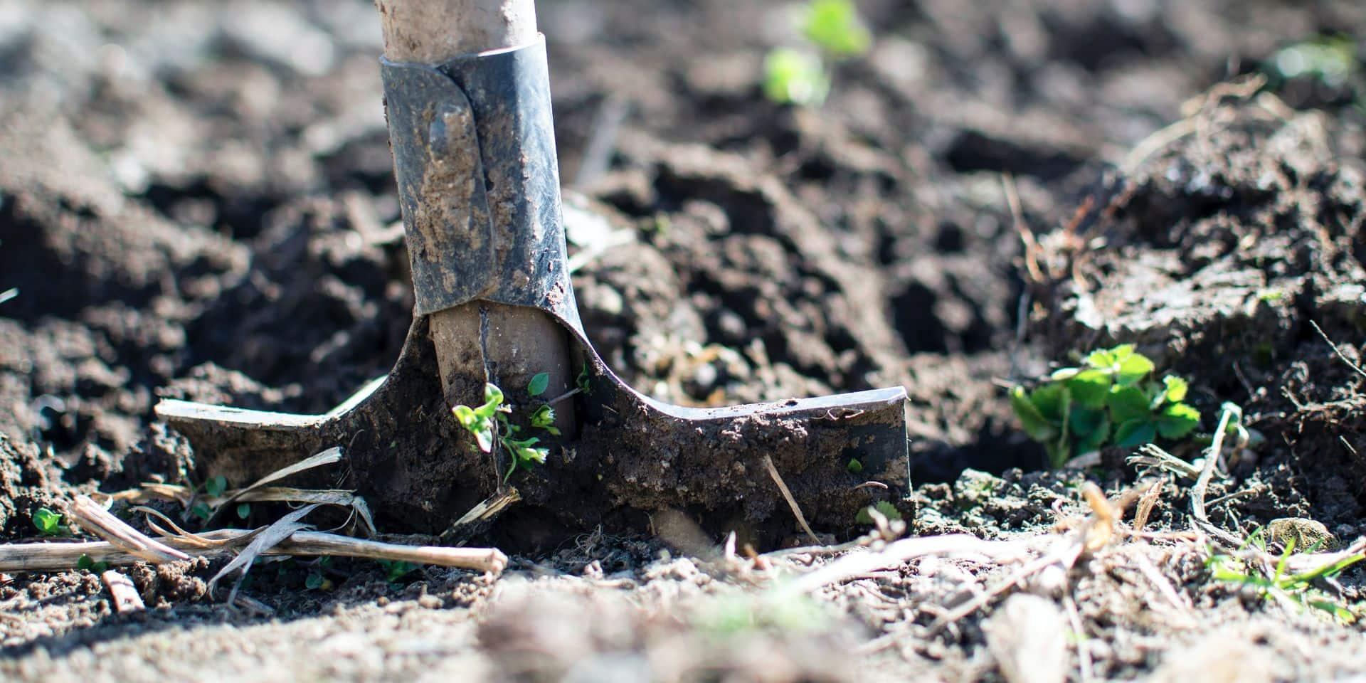 Pour pouvoir stocker l'eau, il faut d'abord soigner le travail du sol