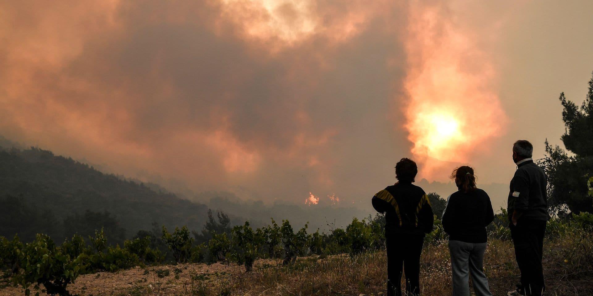 """Grèce: les pompiers luttent encore contre l'incendie de Geraneia, """"une catastrophe écologique"""""""