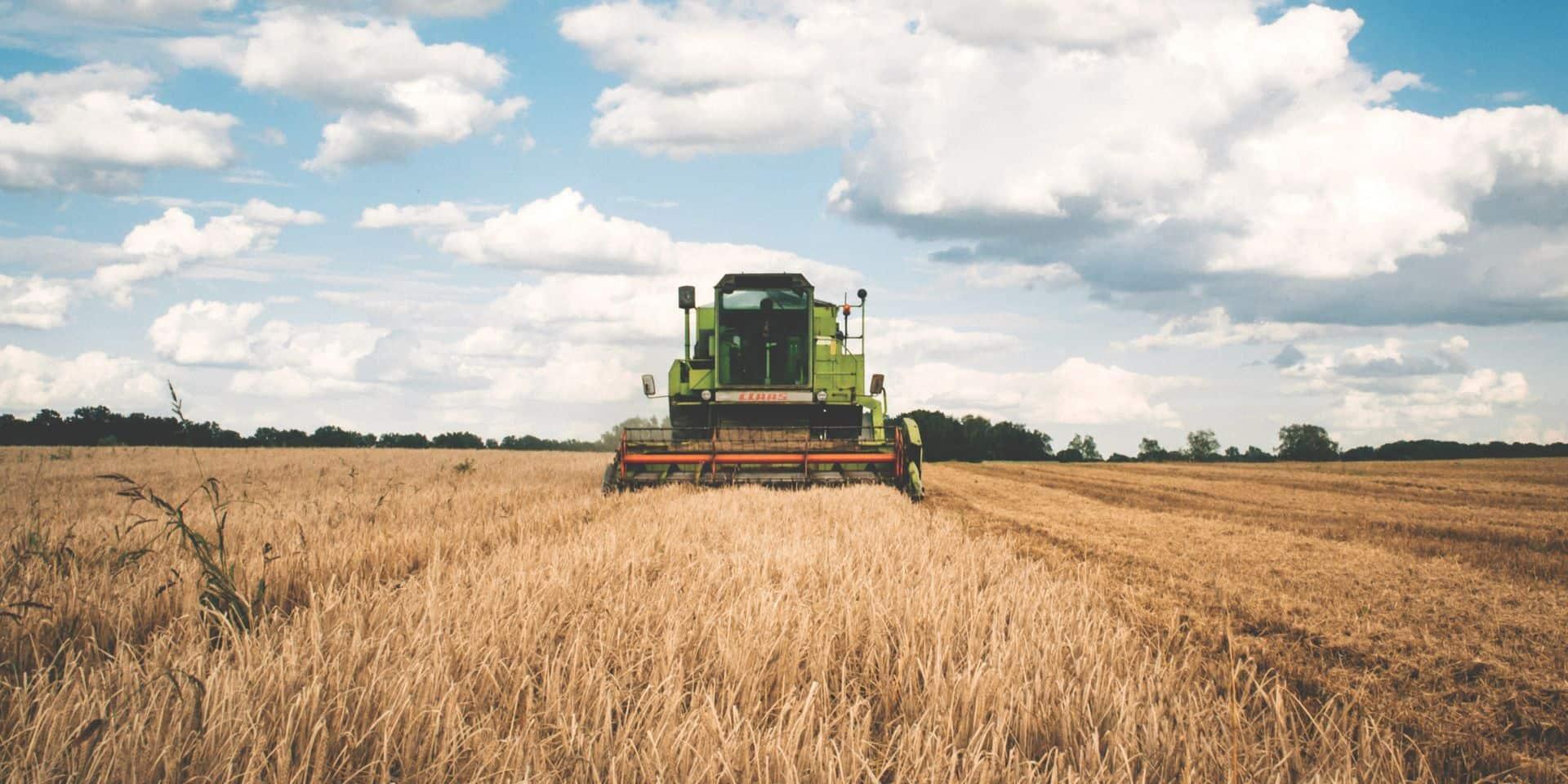 Comment les agriculteurs vont devoir s'adapter aux sécheresses à répétition