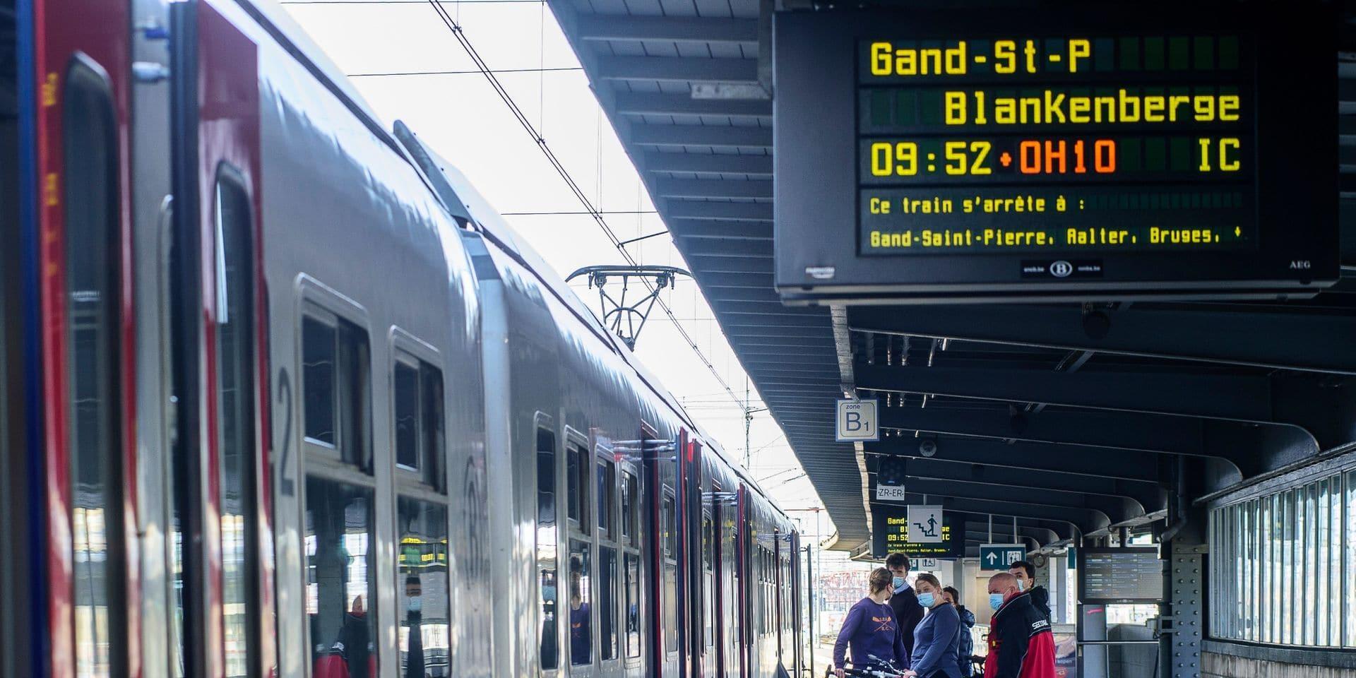 56 minutes de retard ferroviaire par jour à cause d'animaux sur les voies