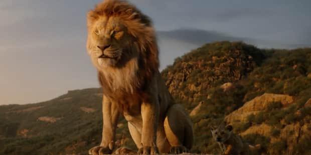 Le Roi Lion Une Operation Commerciale Un Realisme Bluffant Mais