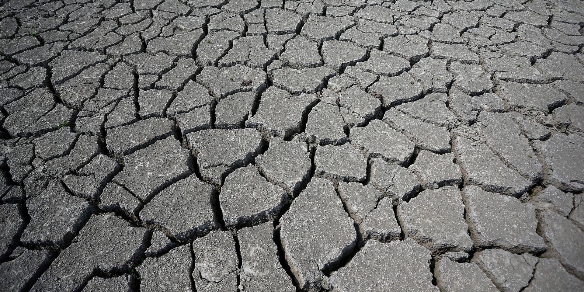 Réchauffement climatique: un demi-degré de plus coûterait la vie à des dizaines de milliers de personnes