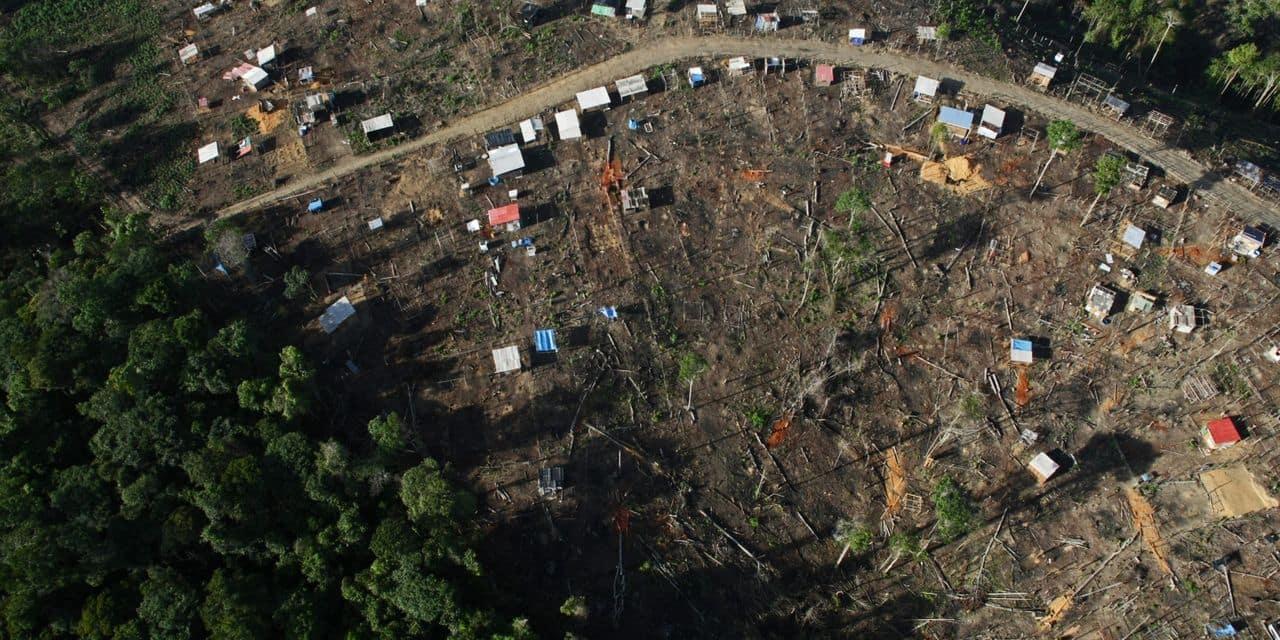 Le Brésil pourrait réduire la déforestation illégale avec une aide
